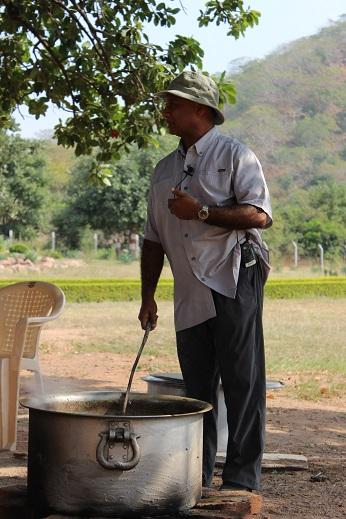 Triphala oil 14jpg