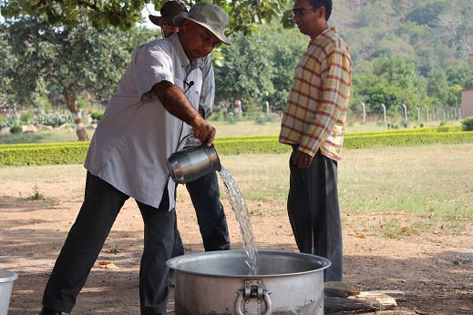 Triphala oil 2