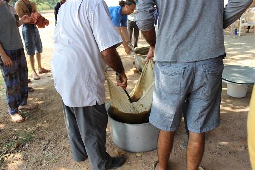 Triphala oil 23jpg