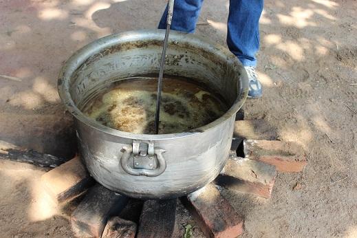 Triphala oil 31jpg