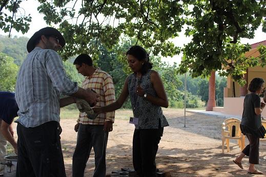 Triphala oil 36jpg